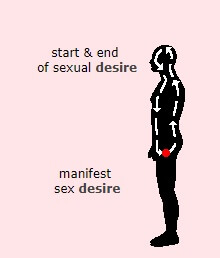 Sexual desire, start and end, manifest